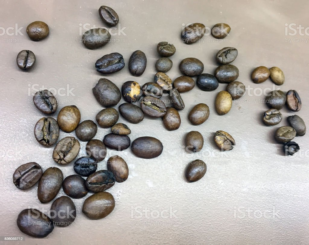 coffee bean on the ground. stock photo