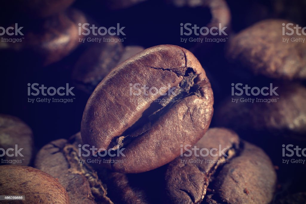 Coffee bean on the of ground coffee stock photo