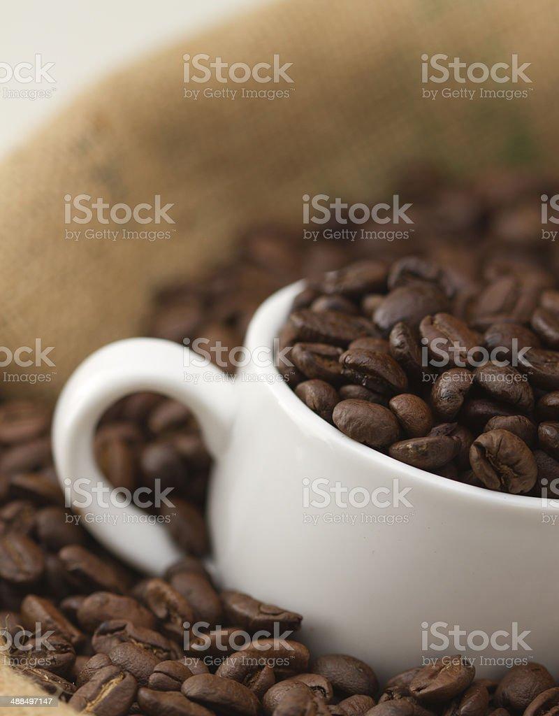 Coffee Bean stock photo