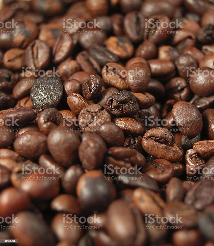 Coffee beans 05 royalty-free stock photo