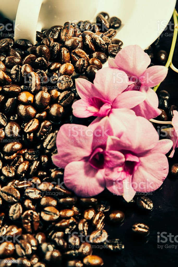 Coffee Beans and Flower royalty-free stock photo