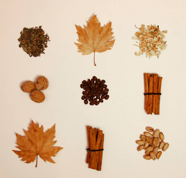 coffee beans, dry nuts and dry leaves stock photo