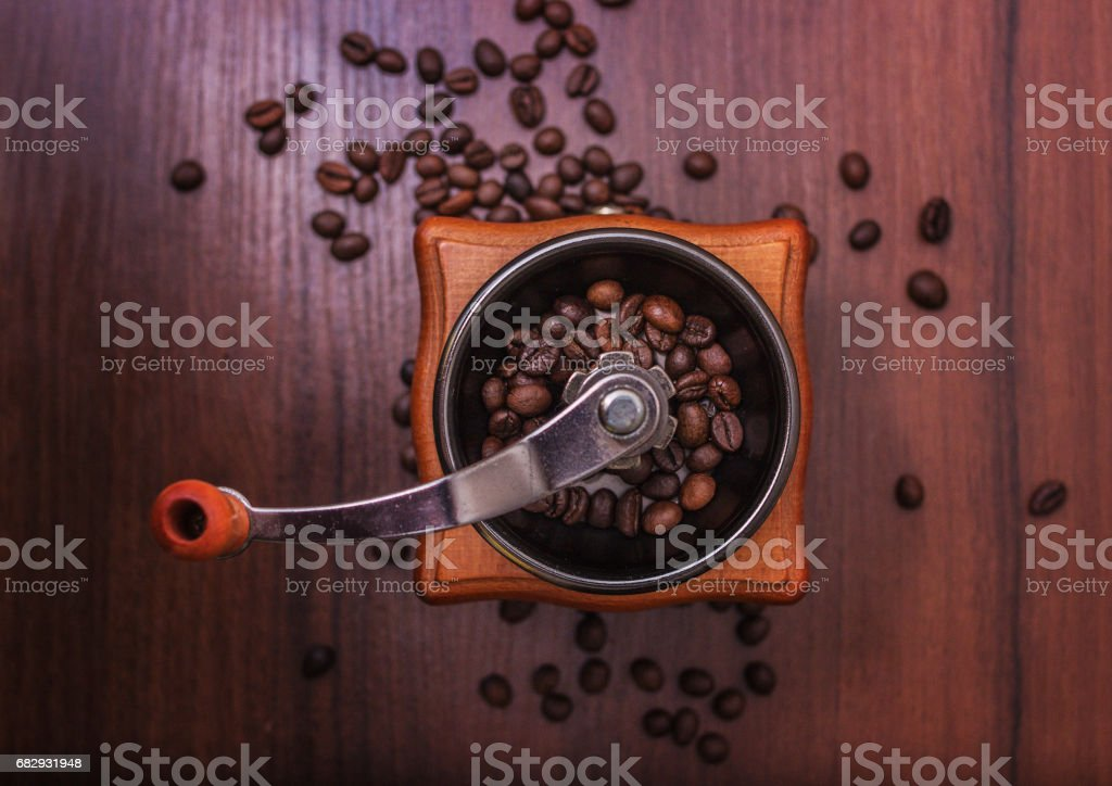 Coffee beans in a coffee grinder on a tree royalty-free stock photo