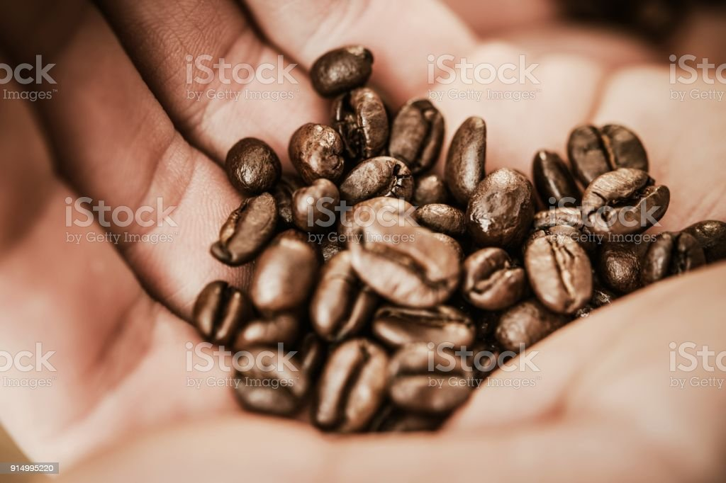 Coffee Beans in a Hand stock photo