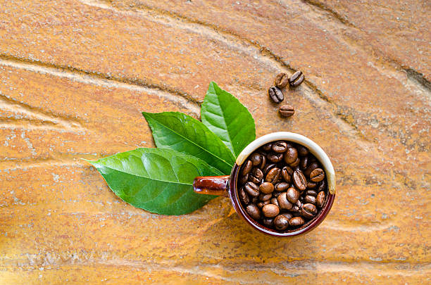 Coffee beans in a mug with leaves stock photo