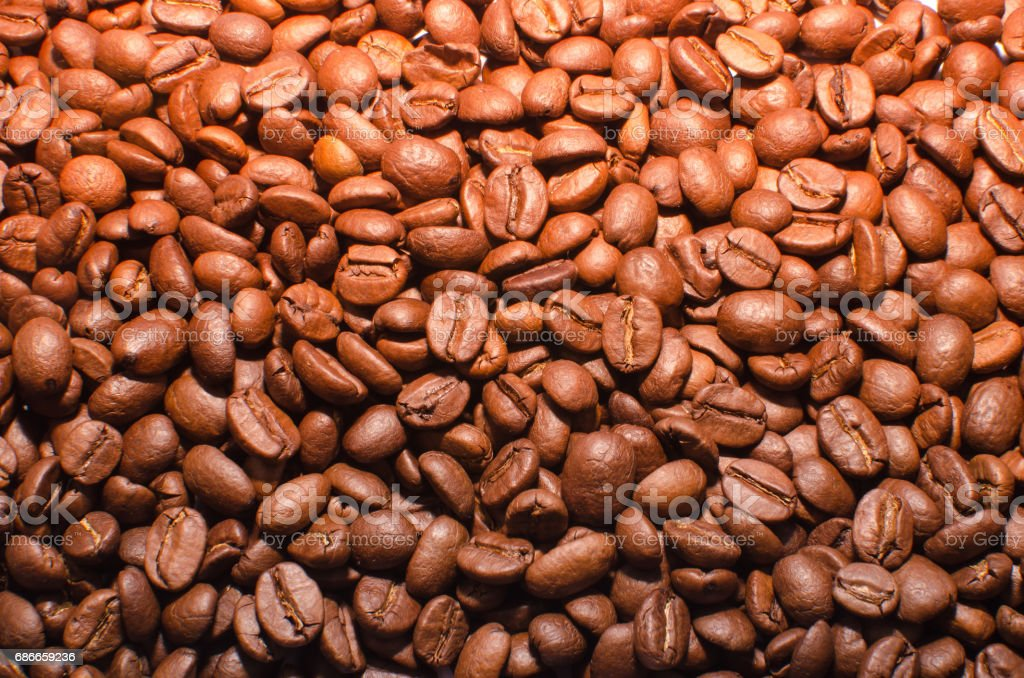 Coffee beans in a warm light Lizenzfreies stock-foto