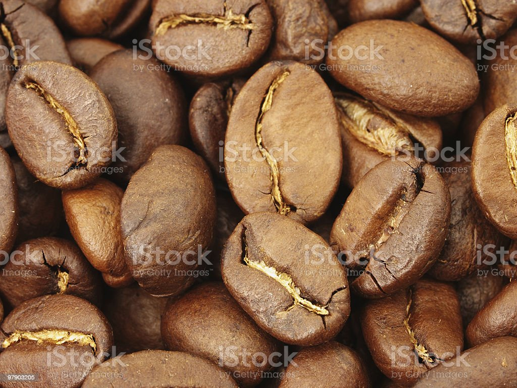 Coffee beans in close-up royalty-free stock photo
