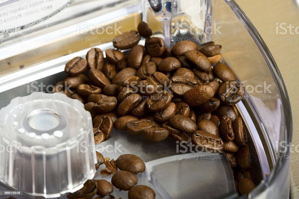 Coffee beans in espresso machine royalty-free stock photo