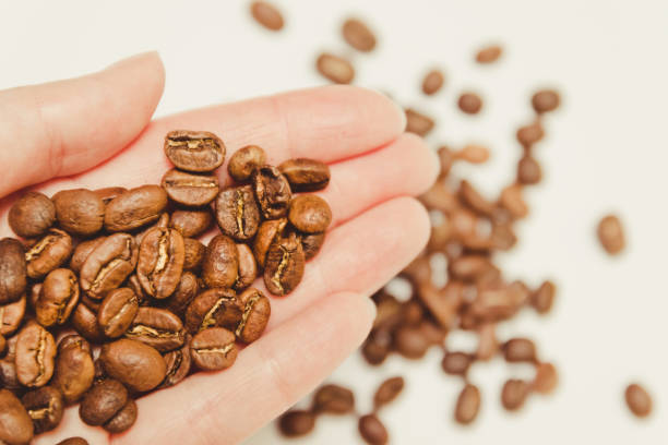 kaffeebohnen in der hand der bauern. - versandrolle stock-fotos und bilder