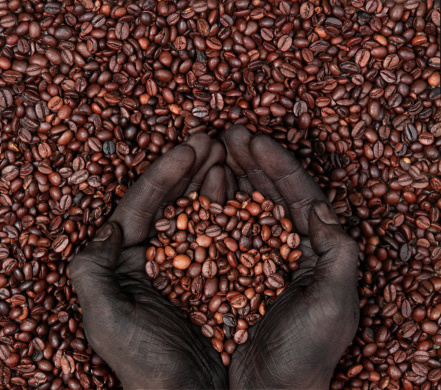 istock Coffee Beans in Heart Shape and Human Hands 108226909