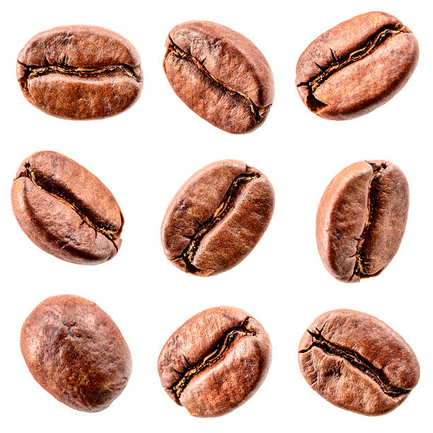 coffee beans isolated on white. collection - 豆類 個照片及圖片檔