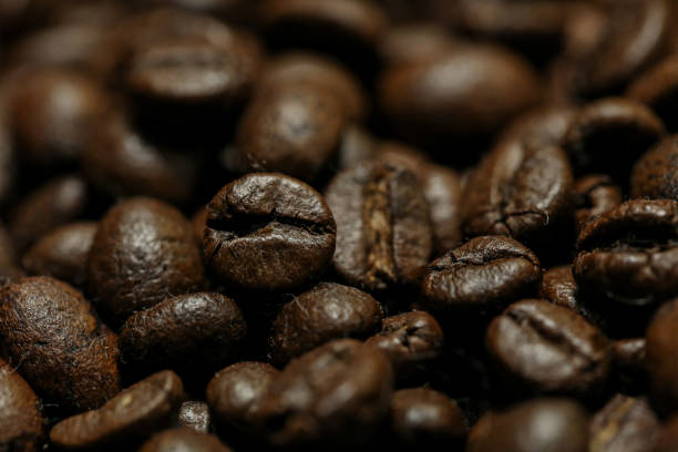 Coffee Beans - Macro stock photo