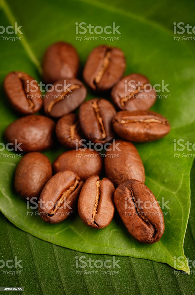 Coffee Beans On A Leaf For Spa Treatment stock photo