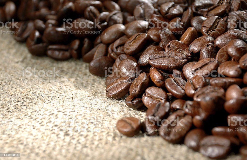 Coffee beans on a rough sacking royalty-free stock photo