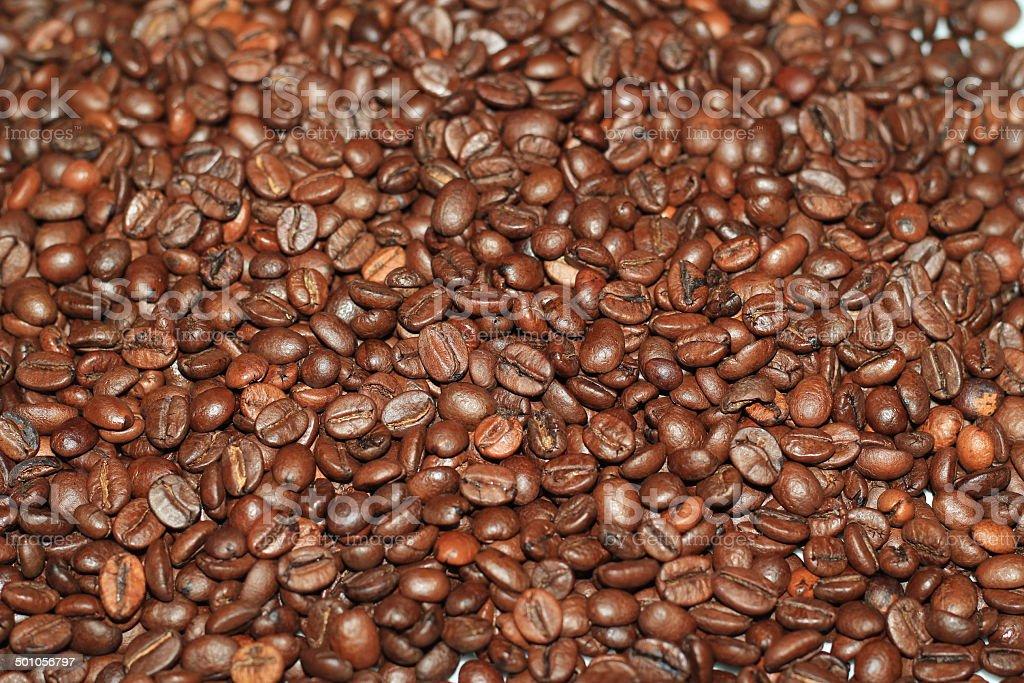 Coffee Beans stok fotoğrafı