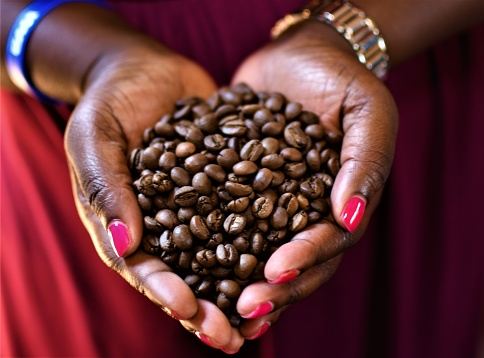 커피 원두 0명에 대한 스톡 사진 및 기타 이미지