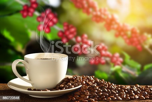 istock Coffee cup coffee beans 880720548