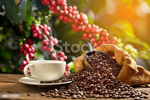 istock Coffee cup coffee beans 880720550