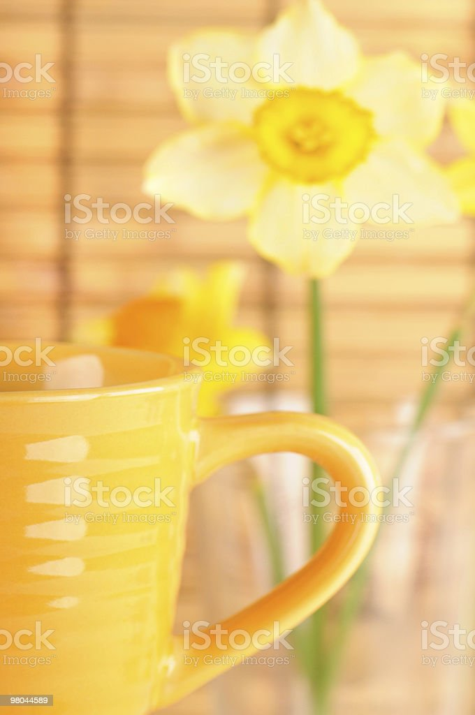 coffee cup in morning royalty-free stock photo