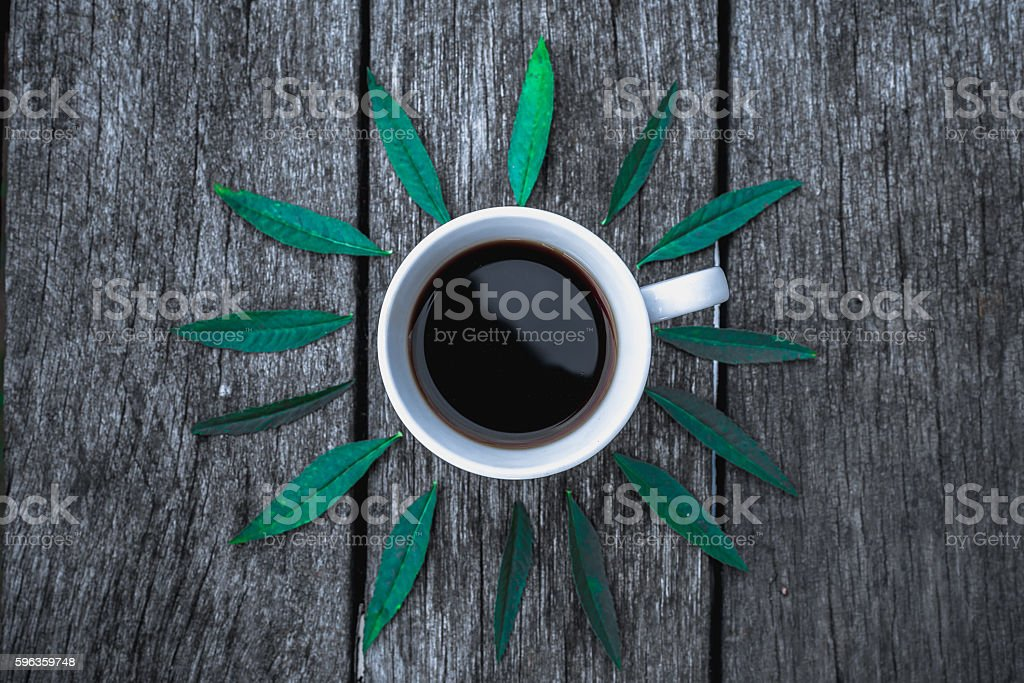 Coffee cup on green leaves background Flat lay. royalty-free stock photo