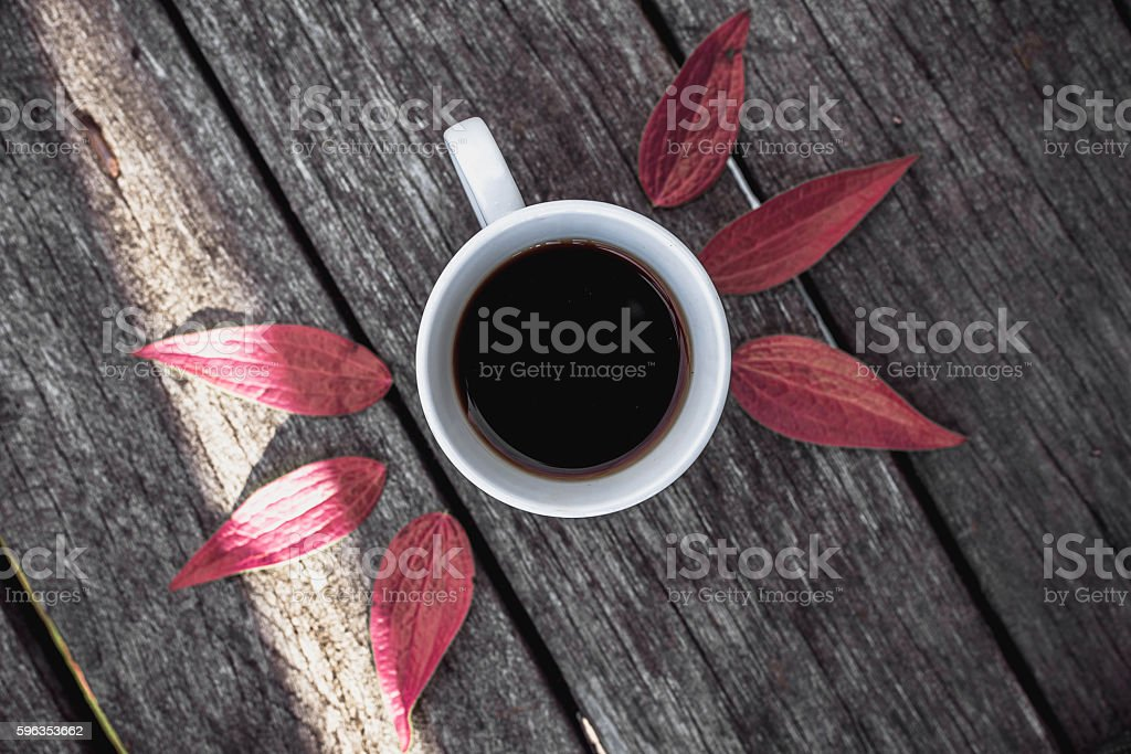 Coffee cup on leaves background Flat lay. royalty-free stock photo