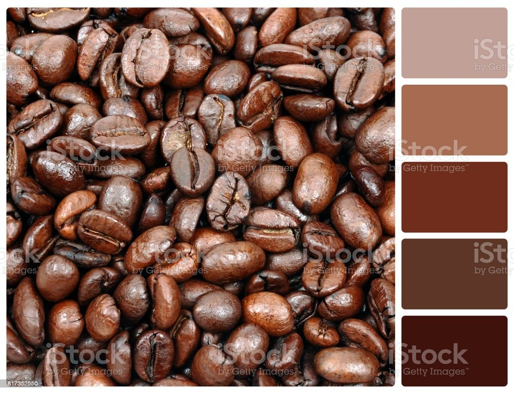 Coffee Grain Texture With Palette Color Swatches Stock Photo Istock