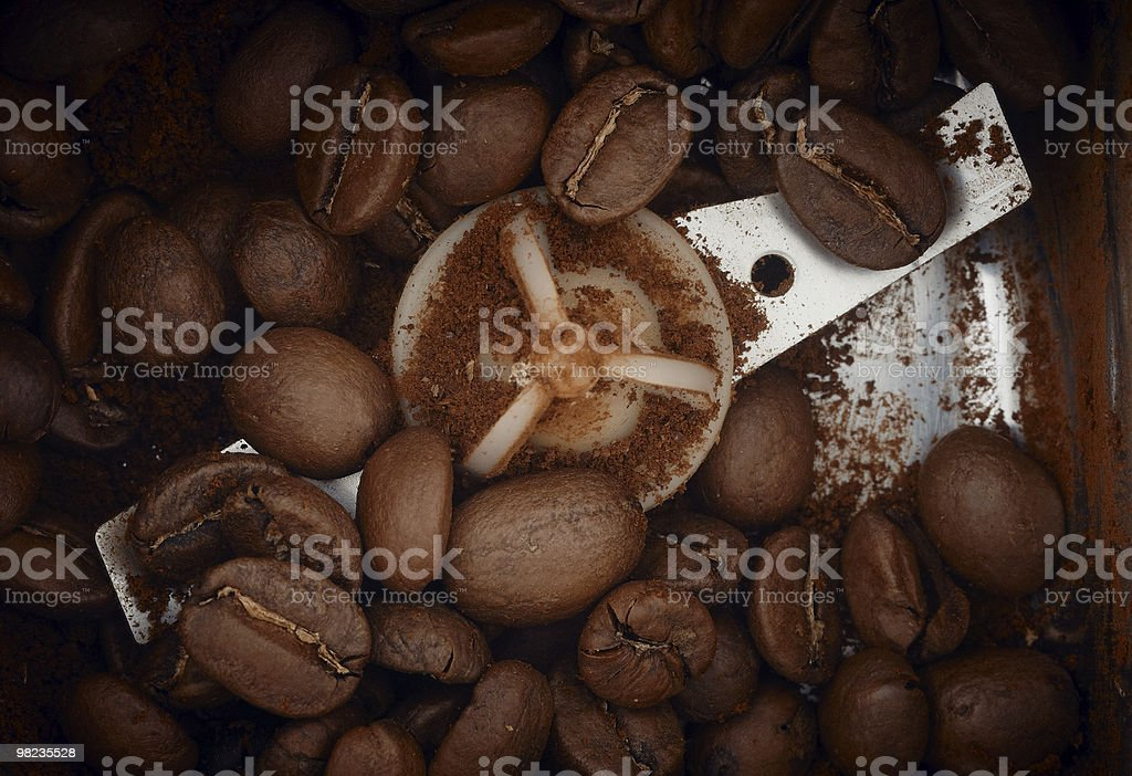 Coffee grains processing royalty-free stock photo