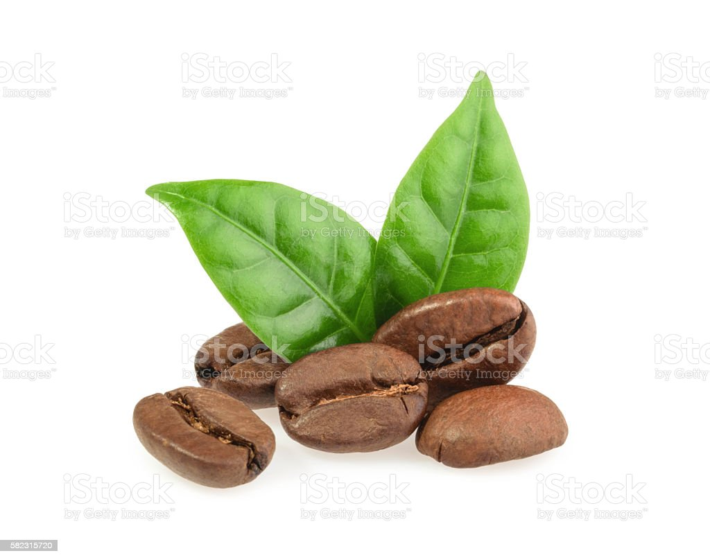 coffee grains with leaves isolated stock photo
