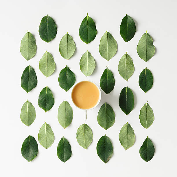 Coffee or tea on green leaves pattern Coffee or tea on green leaves pattern on white background. Flat lay. knolling concept stock pictures, royalty-free photos & images