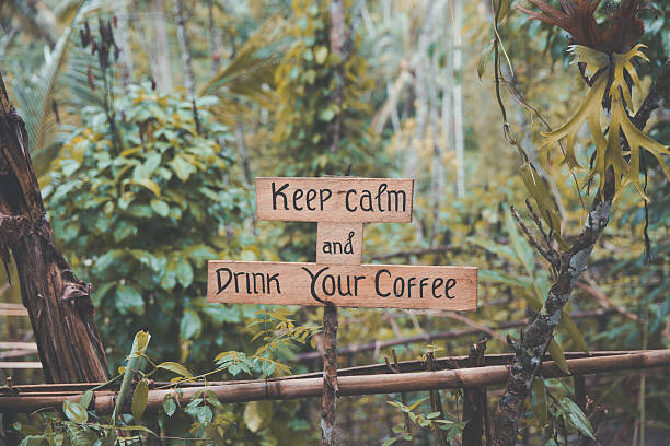 coffee quotes in a rustic timber with jungle backgrounds - grüne zitate stock-fotos und bilder