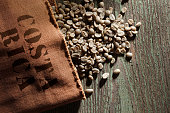 Freshly harvested unroasted coffee beans.