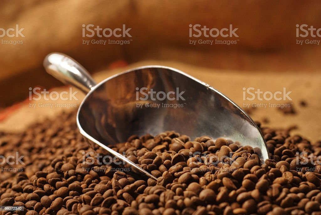 Coffee Scoop royalty-free stock photo