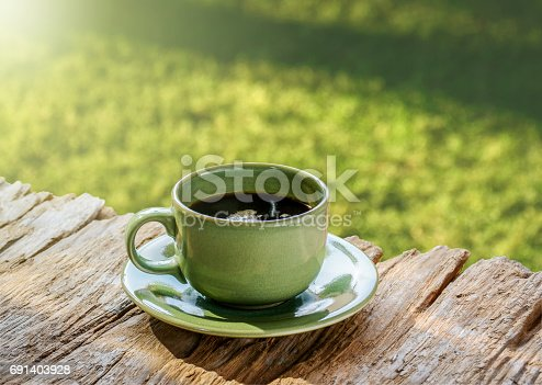 853676006 istock photo Coffee time by the green gaeden. 691403928