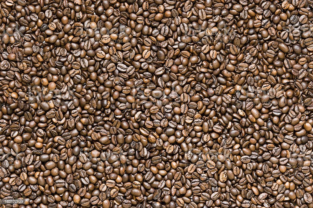 Coffee XXL royalty-free stock photo