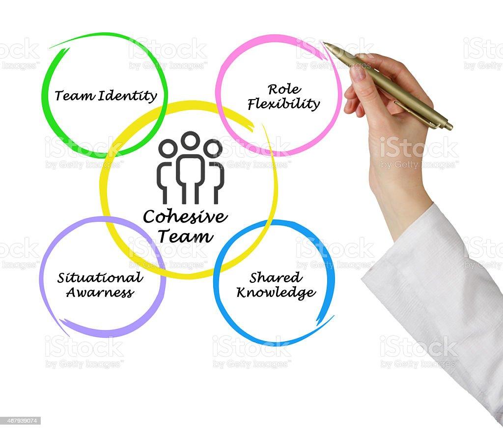 Cohesive team stock photo