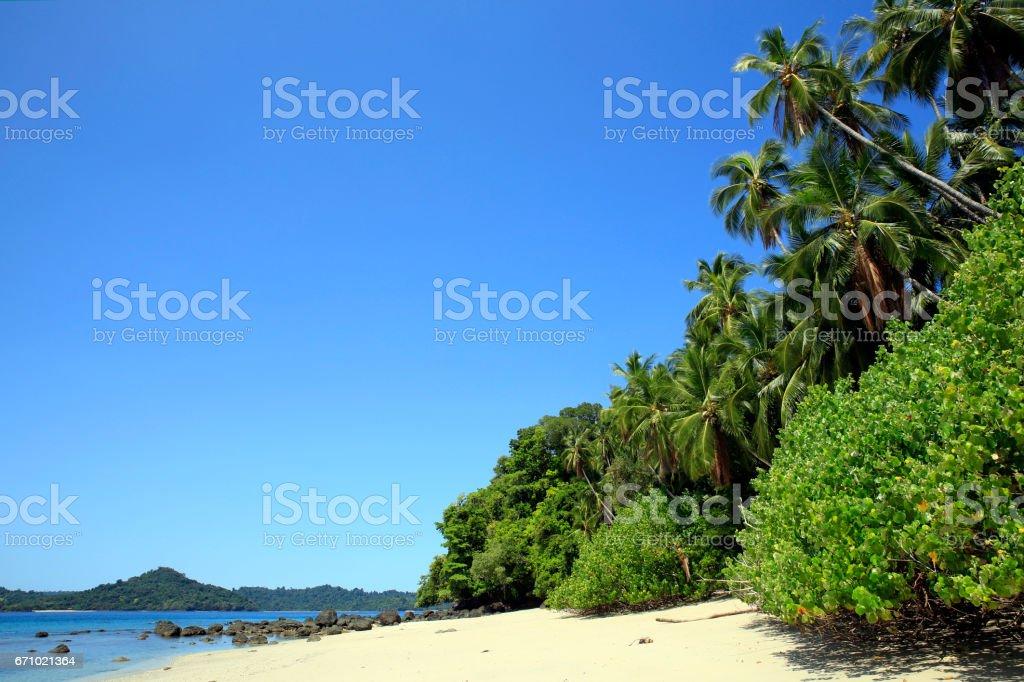 Coiba National Park bildbanksfoto