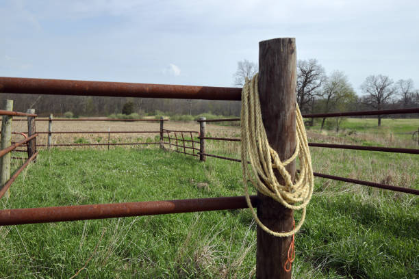 A Coil Of Sisal Rope Fashioned Into A Lasso Hangs On The Gate Post