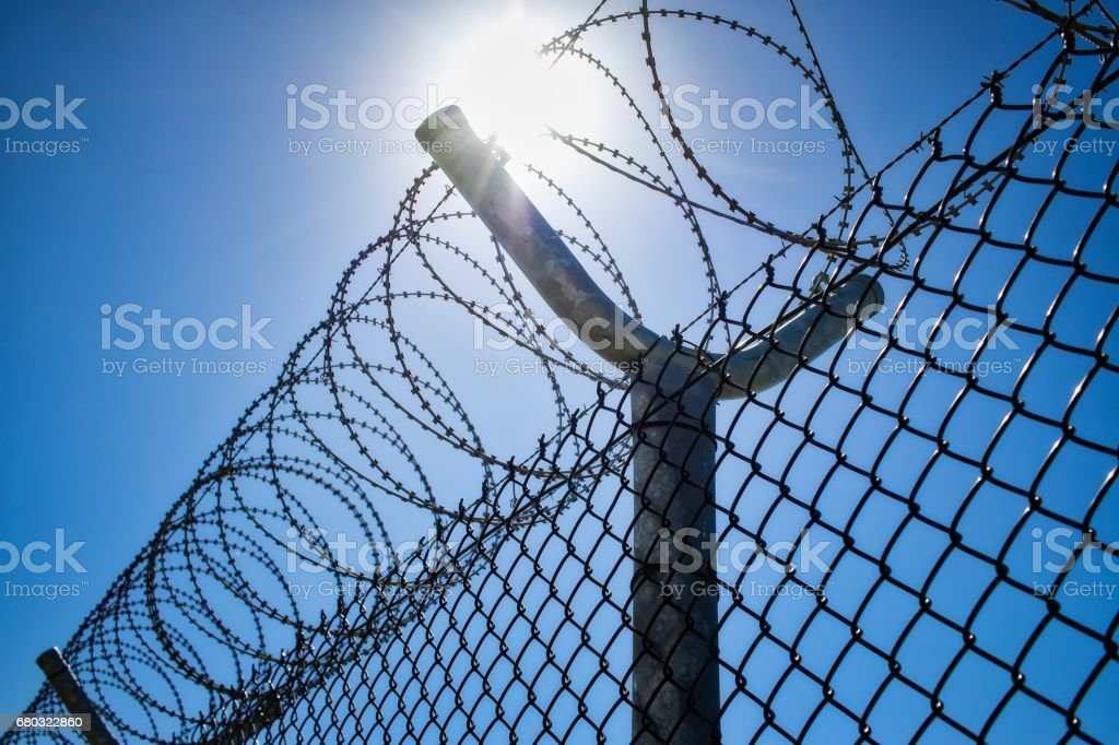 Coiled Barbed Wire stock photo