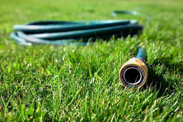 coiled green hose with nozzle pointing out laying on grass - garden hose stock pictures, royalty-free photos & images