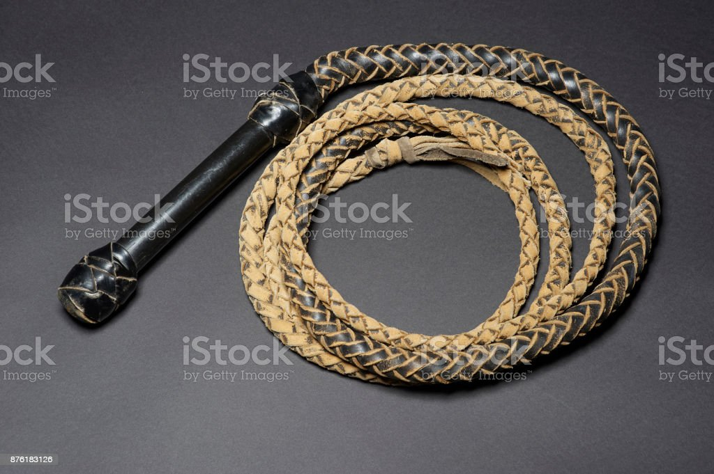 coiled leather bullwhip stock photo