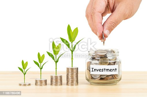 Coin glass jar container and stack on wooden desk and plant tree, investment concept, on white background, with hand putting money