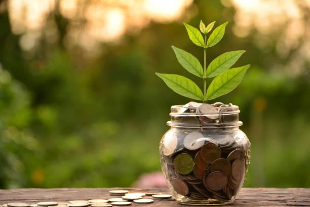 Münze im Glas befindet sich auf einem Holz für Unternehmen. – Foto