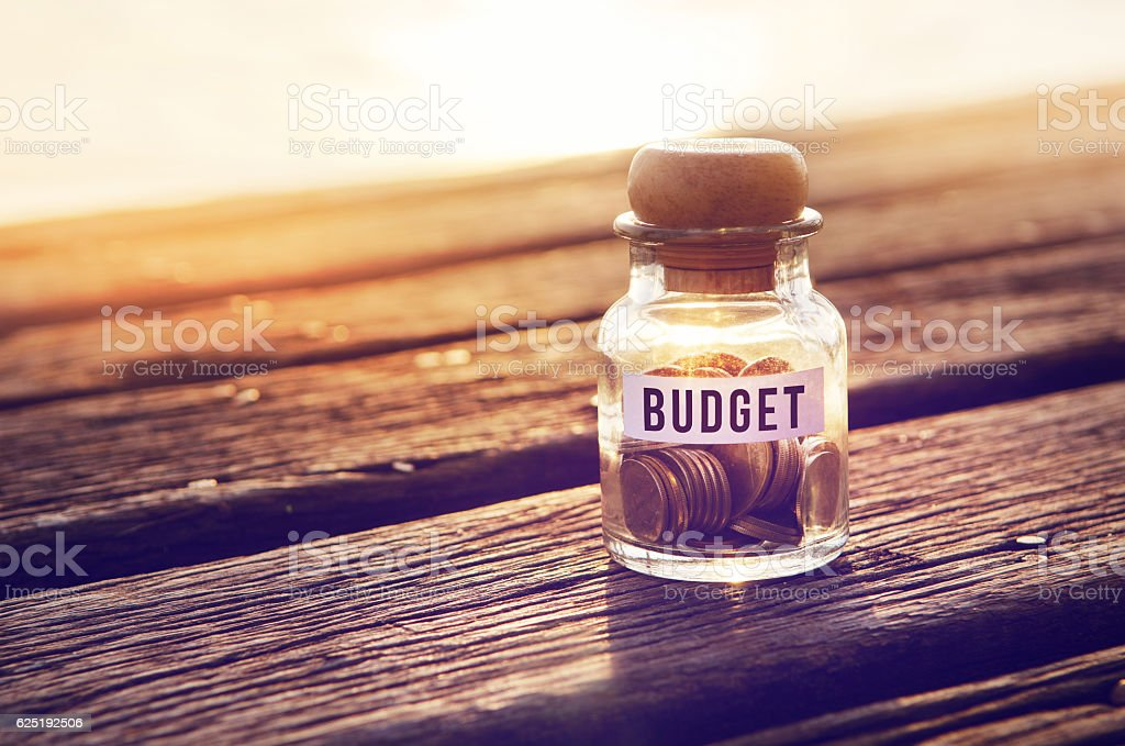 Coin in piggy bank with text budget on paper – Foto