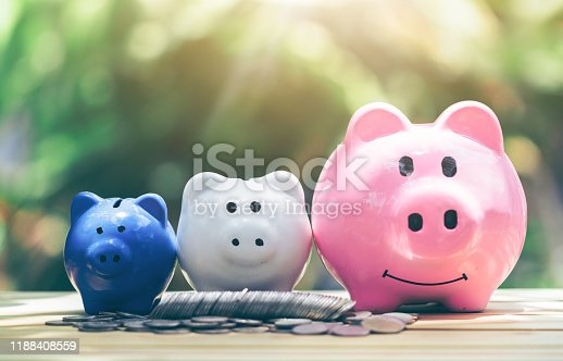 Coin with piggy bank, three pigs placed on a wooden table, Concept of saving or investment. planning savings money of coins to buy a home concept for property, mortgage investment.
