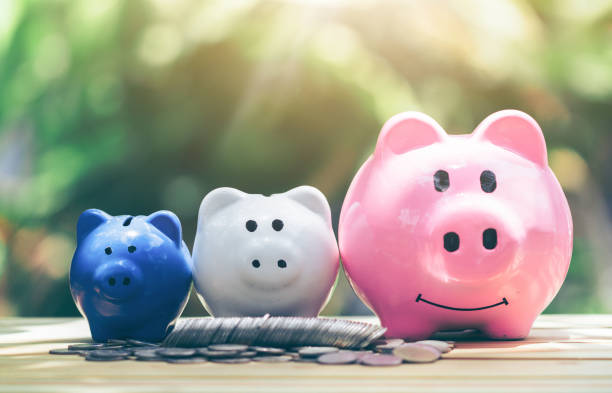 coin with piggy bank, three pigs placed on a wooden table, concept of saving or investment. - financial planning stock pictures, royalty-free photos & images