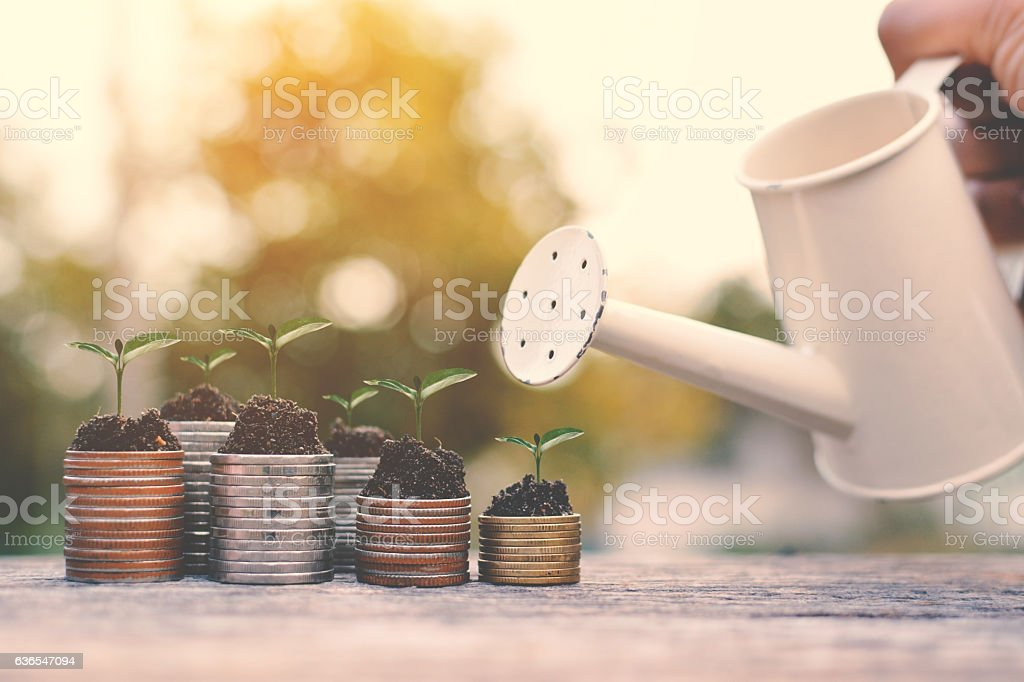 coin with watering on old wood stock photo