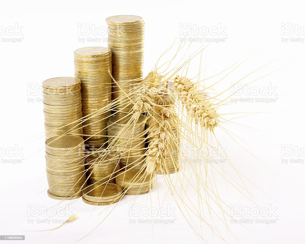coins and corn royalty-free stock photo