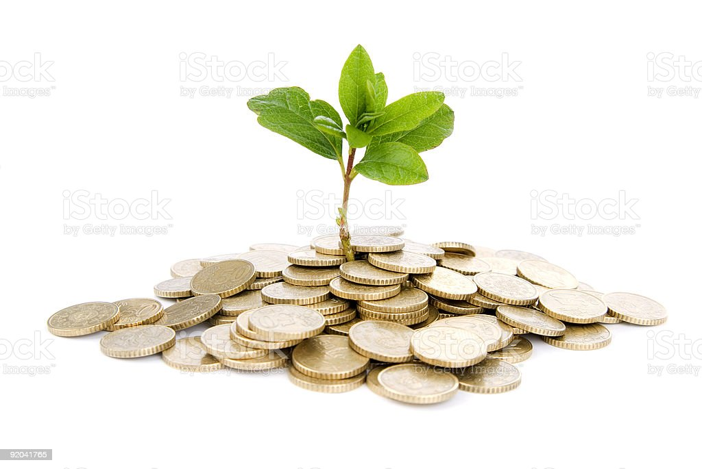 Coins and plant, isolated on white background royalty-free stock photo