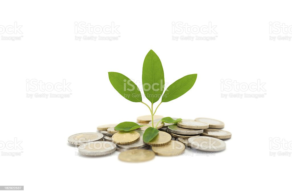 Coins and Plants royalty-free stock photo