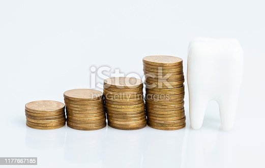 Coins and tooth model on white background.